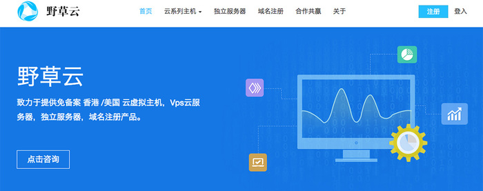2019开年野草云 香港KVM VPS主机/1G内存/2Mbps带宽/年付199元